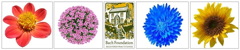 Remedii Florale Bach -